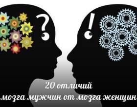 20 Відмінностей мозку жінок від мозку чоловіків фото
