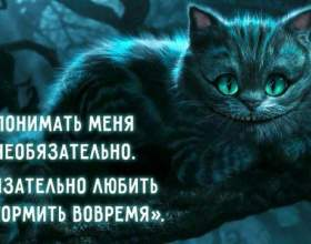 29 Мудрість чеширского кота фото