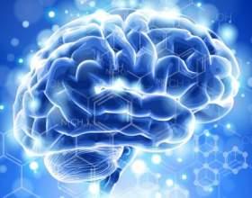 7 Книг для розвитку вашого мозку. фото