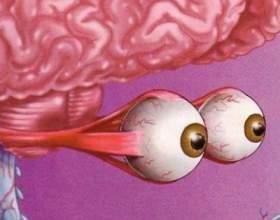 9 Ігор, в які грає наш мозок фото
