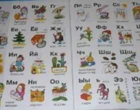 Азбука і алфавіт - чим вони відрізняються? фото