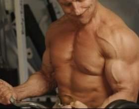 Базові вправи в тренажерному залі для набору м`язової маси (відео) фото