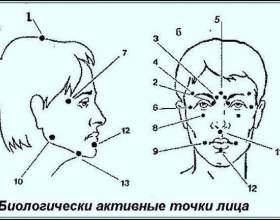 Біологічно активні точки на голові - ваша швидка допомога фото