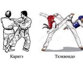 Чим карате відрізняється від тхеквондо - порівняння бойових мистецтв фото