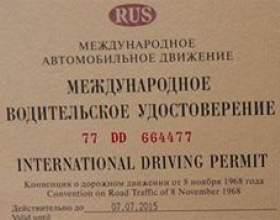 Чим міжнародні водійські відрізняються права від звичайних фото