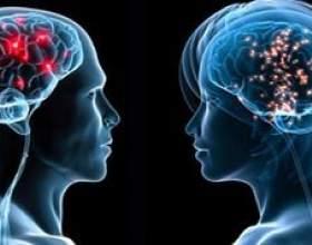 Чим чоловічий мозок відрізняється від жіночого? фото