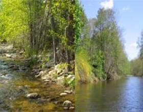 Чим відрізняється струмок від річки - основні відмінності фото