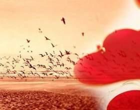 Що таке любов? Сотні питань без відповідей або одна відповідь на всі питання фото