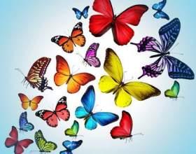 Робимо світяться метеликів на стіні фото