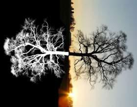 Депресія - це: визначення, опис і відповідь на питання, як з нею боротися фото
