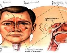 Діагностика і лікування фото