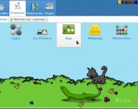 Doudoulinux: завантаження livecd і дисплейний менеджер фото