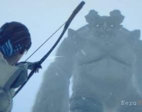 Духовна спадкоємиця shadow of the colossus вийшла на kickstarter фото