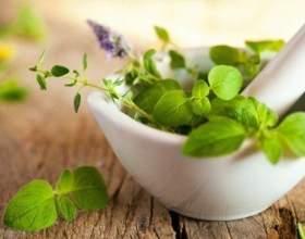 Гіпертонічна хвороба-рецепти з лікарських рослин фото