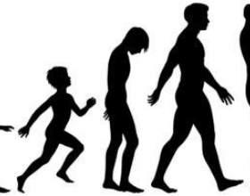 Етапи розвитку життя людини фото