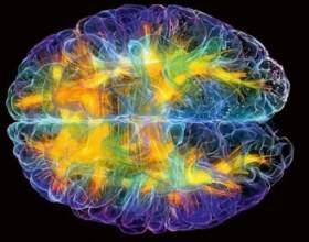 Ці 5 фактів про мозок змінять ваше життя фото