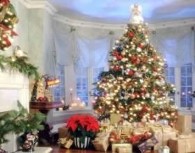 Це потрібно врахувати, щоб прикрасити ялинку до 2017 року правильно! Нехай новорічне дерево принесе удачу! фото