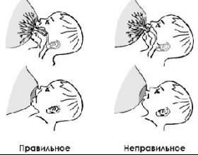 Як прикладати і годувати дитину грудьми? фото