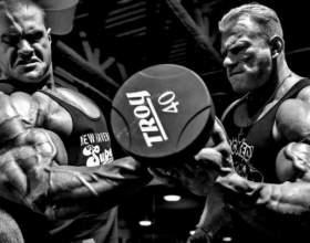 Як розділяти групи м`язів при тренуваннях на масу фото