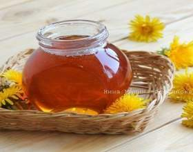 Як зробити мед з кульбаб? фото