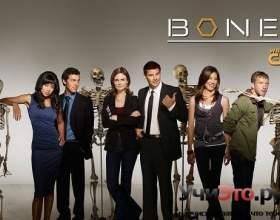 Кістки 11 сезон фото