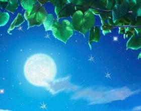 Любов в місячному сяйⳠфото