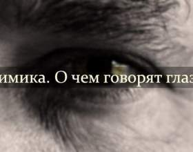 «Міміка. Про що говорять очі » фото