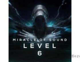 Miracle of sound - level 6 фото