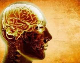 - Потужність мозку, переведена в тепло, аналогічна потужності десятіваттной електролампочки. -Приблизно ємність нашої пам`яті становить від 3 до 1000 терабайт. Ємність всього національного британського архіву - 70 терабайт. -Мозг споживає одну п`яту части фото