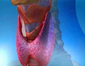 Напій, відновлювальний щитовидну залозу і запобігає багато захворювань фото