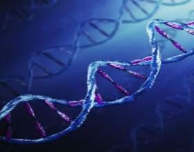 Наші думки викликають зміни в генах !!! фото