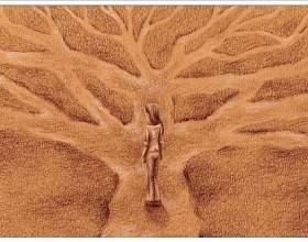 П`ять мудреців заблукали в лісі фото