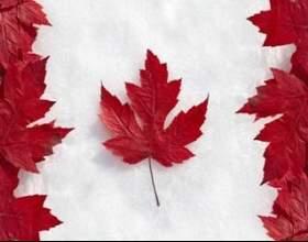 Чому багато хто хоче виїхати в канаду? фото