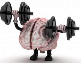 Як розвивати півкулі мозку? фото