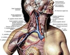 Рак грудей - ураження лімфовузлів фото