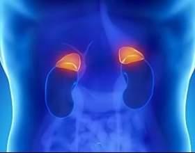 Синдром втоми надниркових залоз: ознаки і лікування фото