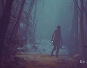 Слух: портированием rise of the tomb raider на ps4 займається avalanche studios фото