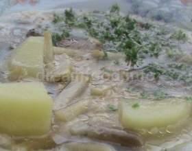Суп з опеньками і вівсяними пластівцями фото