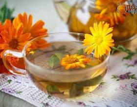 Трав`яний чай для печінки фото