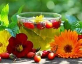 Трав`яні, квіткові і ягідні чаї - коли їх пити і чим вони корисні? фото