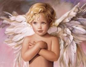 Університет ангелів фото