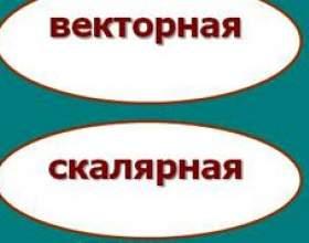 Векторна і скалярна величина - чим вони відрізняються? фото