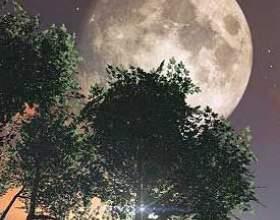 Вплив місяця на посіви фото