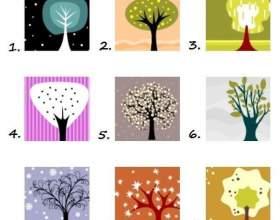 Виберіть 2 дерева, які б ви посадили в своєму саду, і дізнайтеся результати фото