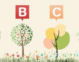 Виберіть вподобане вам дерево і дізнайтеся слово, яке характеризує вас! фото